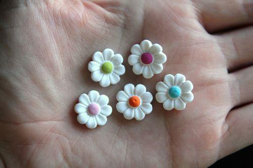Fleurs délicates